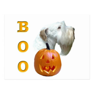 Sealyham Terrier Boo Postcard