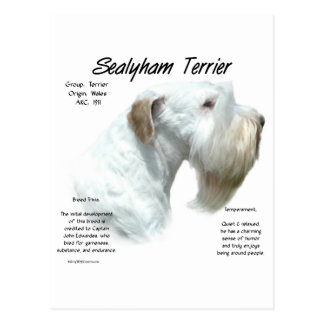 Sealyham Terrier History Postcard