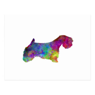 Sealyham Terrier in watercolor Postcard