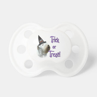 Sealyham Terrier Trick or Treat Pacifier