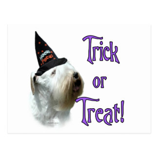 Sealyham Terrier Trick or Treat Postcard