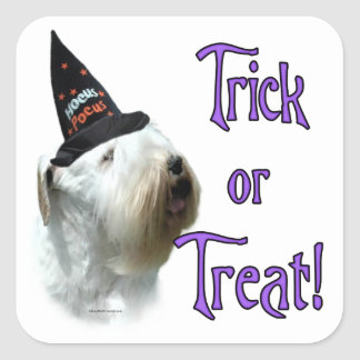 Sealyham Terrier Trick or Treat Square Sticker