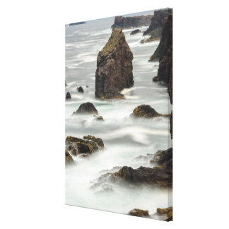 Seascape and sea stacks, Shetland Canvas Print