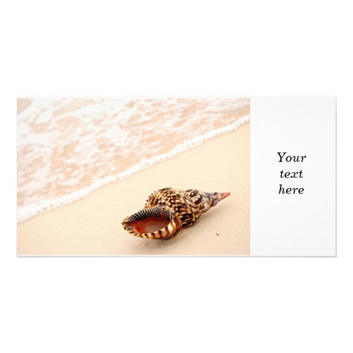 Seashell and ocean wave photo cards