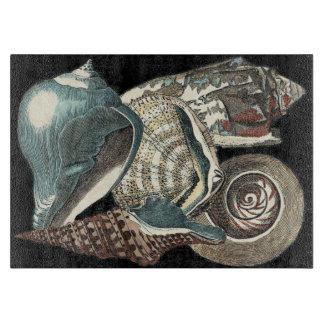 Seashell Anthology Boards