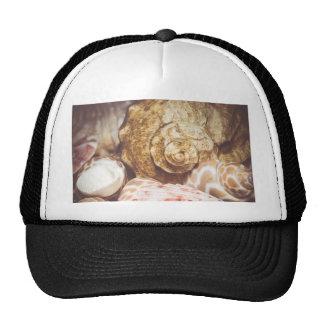 Seashell Background Macro Retro 2 Trucker Hat