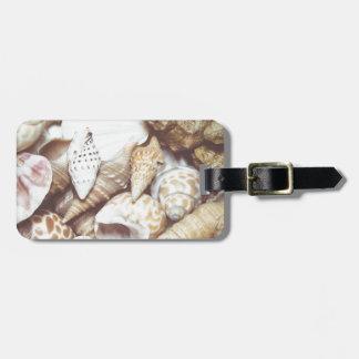Seashell Background Macro Retro Bag Tag