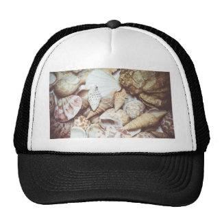 Seashell Background Macro Retro Trucker Hat