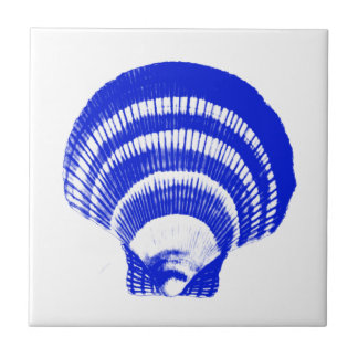 Seashell - cobalt blue and white tile