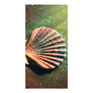 Seashell Customized Photo Card