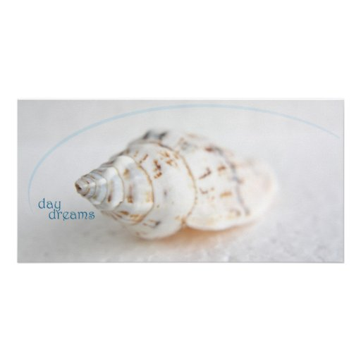 Seashell day dreams personalized photo card