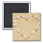 Seashell Heart Magnets