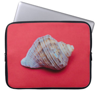 Seashell on a red background computer sleeve