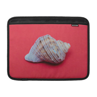 Seashell on a red background MacBook air sleeve