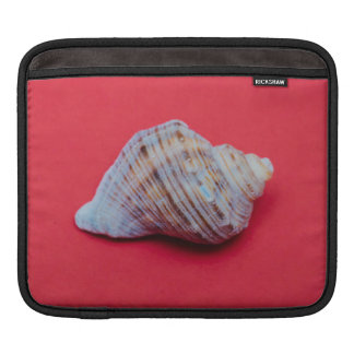 Seashell on a red background sleeve for iPads