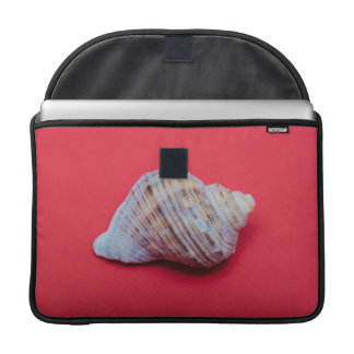 Seashell on a red background sleeves for MacBook pro