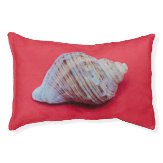 Seashell on a red background small dog bed