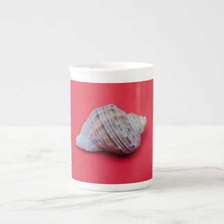 Seashell on a red background tea cup