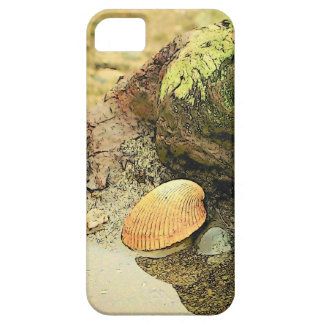 Seashell on Driftwood iPhone 5 Covers