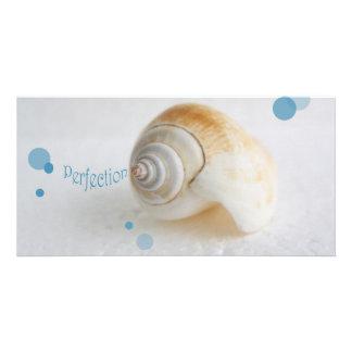 Seashell Perfection Photo Card Template