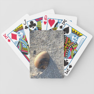 Seashell Photo Bicycle Playing Cards