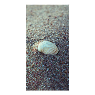 Seashell Photo Greeting Card