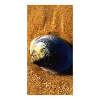 Seashell Personalized Photo Card