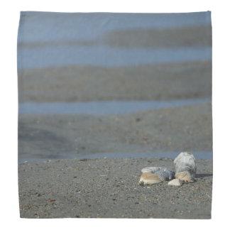 Seashell Pile Kerchiefs