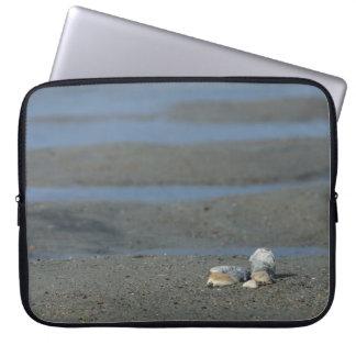 Seashell Pile Laptop Sleeves
