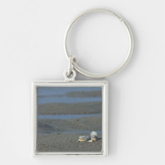 Seashell Pile Silver-Colored Square Keychain