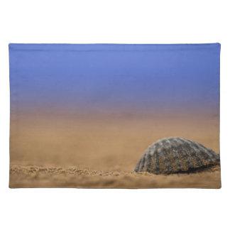 Seashell Place Mat
