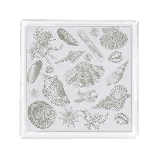 Seashell Shore House Art Print Vintage Drawing Acrylic Tray