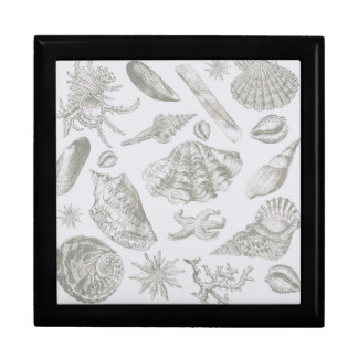 Seashell Shore House Art Print Vintage Drawing Gift Box
