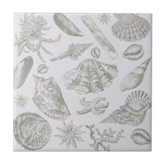 Seashell Shore House Art Print Vintage Drawing Tile