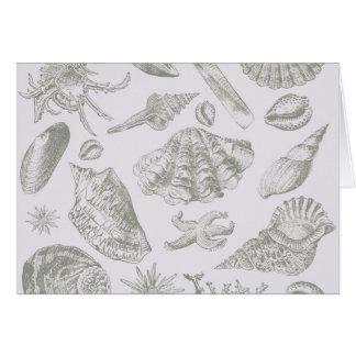 Seashell Soft Antique Art Print Beach House Card