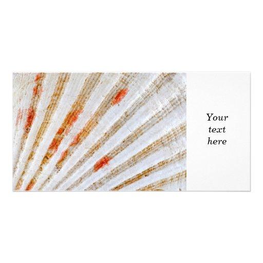 Seashell surface photo card template