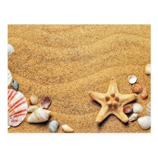 Seashells and Sand Postcard