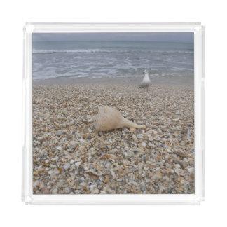 Seashells and Sea Gulls Acrylic Tray