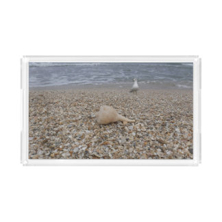 Seashells and Sea Gulls Acrylic Tray