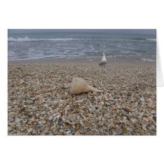 Seashells and Sea Gulls Card