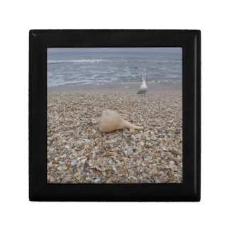Seashells and Sea Gulls Gift Box