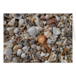 Seashells At The Seashore Card