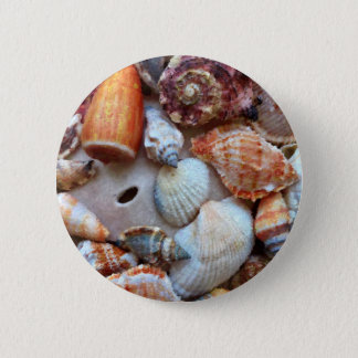Seashells by the Seashore 2 Inch Round Button