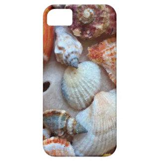 Seashells by the Seashore iPhone 5 Case