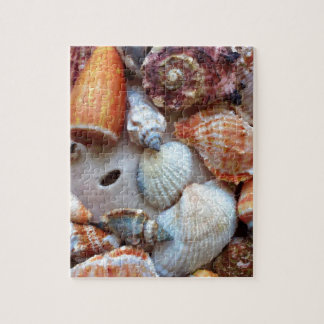 Seashells by the Seashore Jigsaw Puzzle