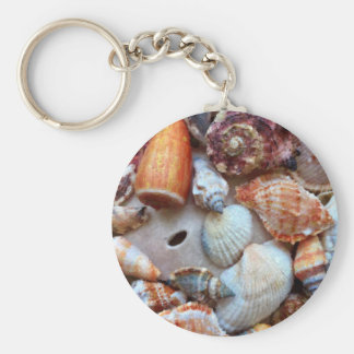 Seashells by the Seashore Keychain