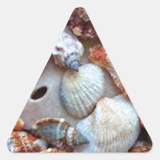 Seashells by the Seashore Triangle Sticker