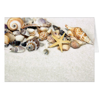 Seashells Card