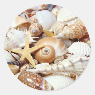 Seashells Classic Round Sticker