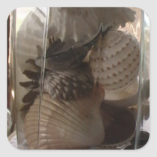 Seashells in a Jar Square Sticker